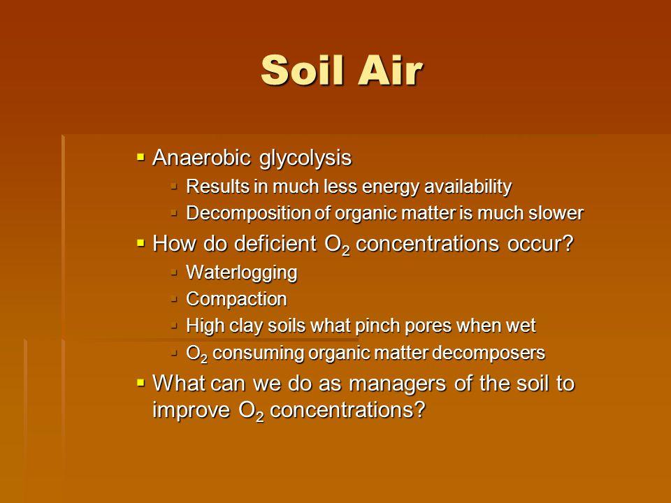 Soil Air Anaerobic glycolysis