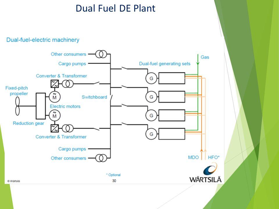 Dual Fuel DE Plant