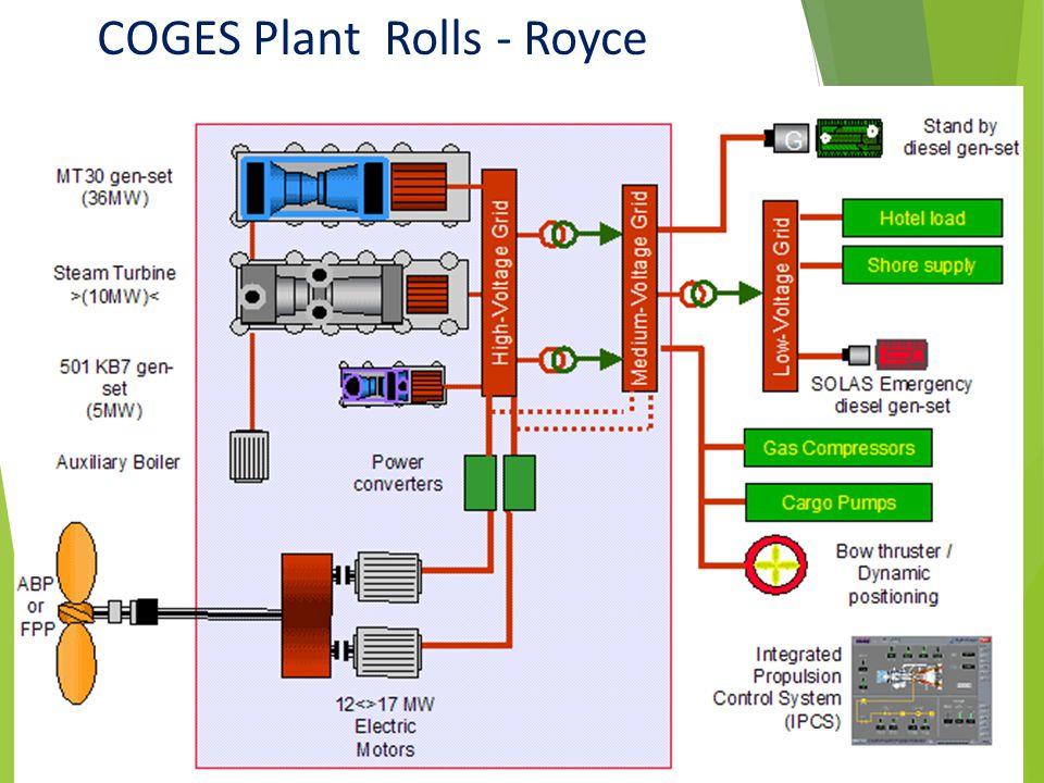COGES Plant Rolls - Royce