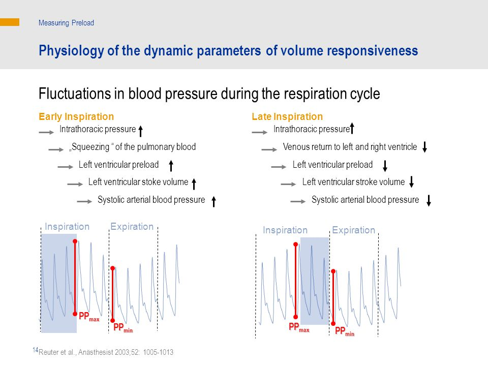 Fluctuations in blood pressure during the respiration cycle
