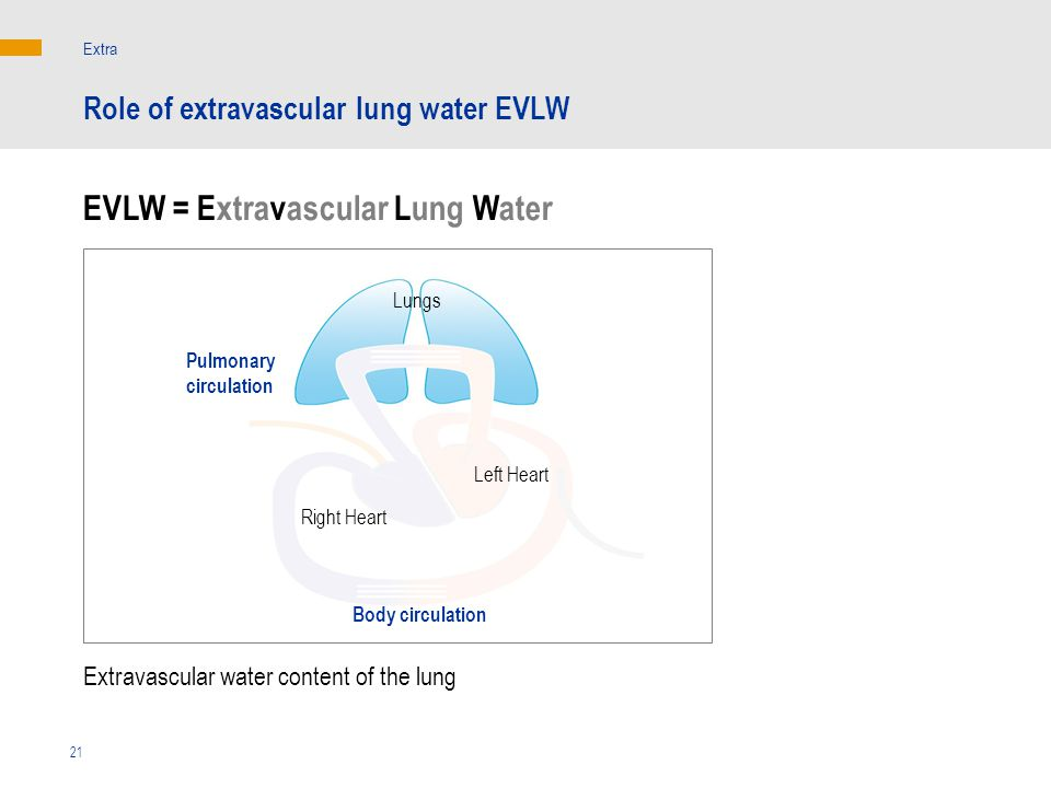 EVLW = Extravascular Lung Water