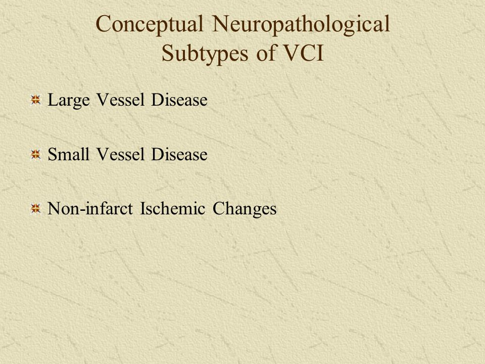 Conceptual Neuropathological Subtypes of VCI