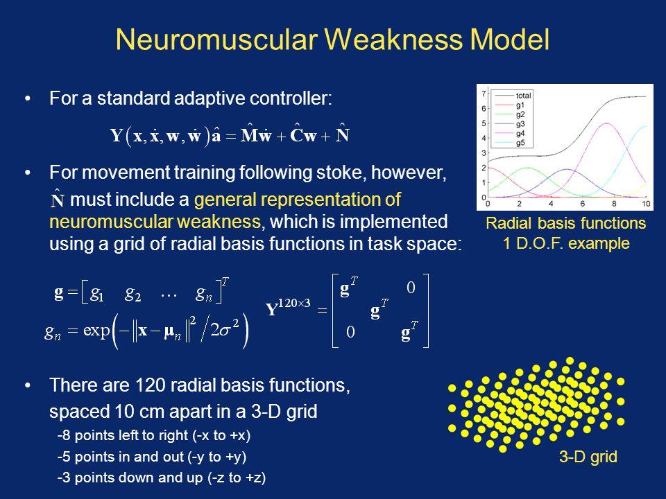 Neuromuscular Weakness Model