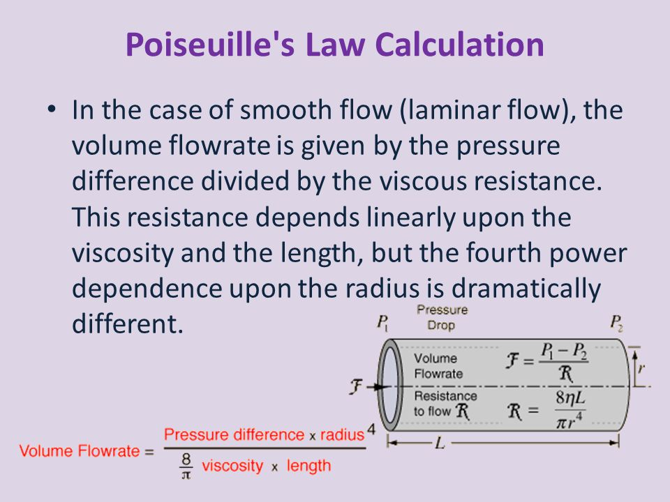 Poiseuille s Law Calculation