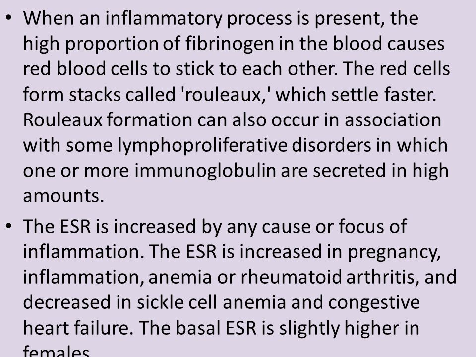 When an inflammatory process is present, the high proportion of fibrinogen in the blood causes red blood cells to stick to each other. The red cells form stacks called rouleaux, which settle faster. Rouleaux formation can also occur in association with some lymphoproliferative disorders in which one or more immunoglobulin are secreted in high amounts.