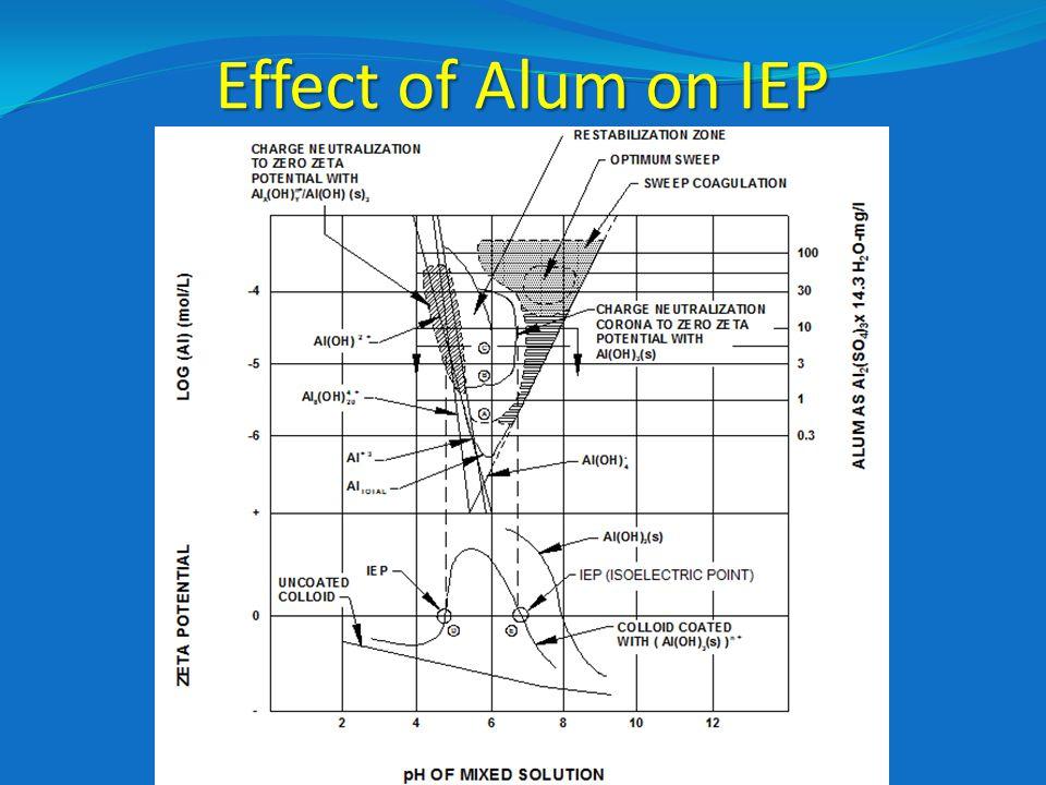 Effect of Alum on IEP