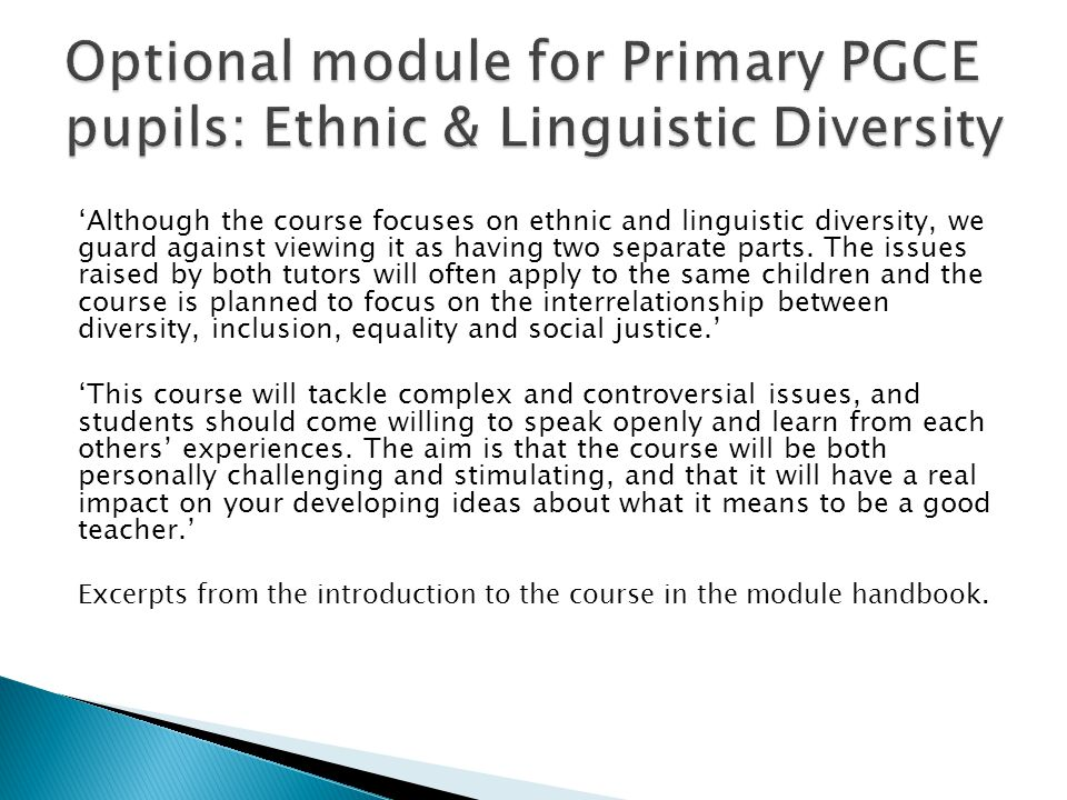 Optional module for Primary PGCE pupils: Ethnic & Linguistic Diversity