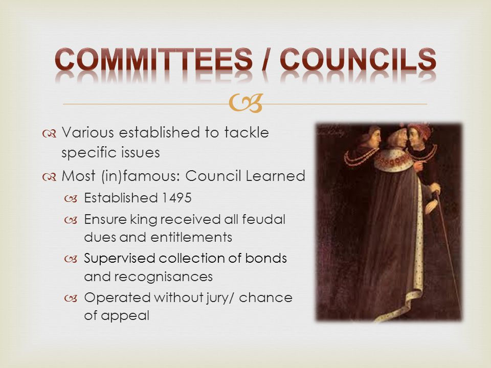 Committees / Councils Various established to tackle specific issues