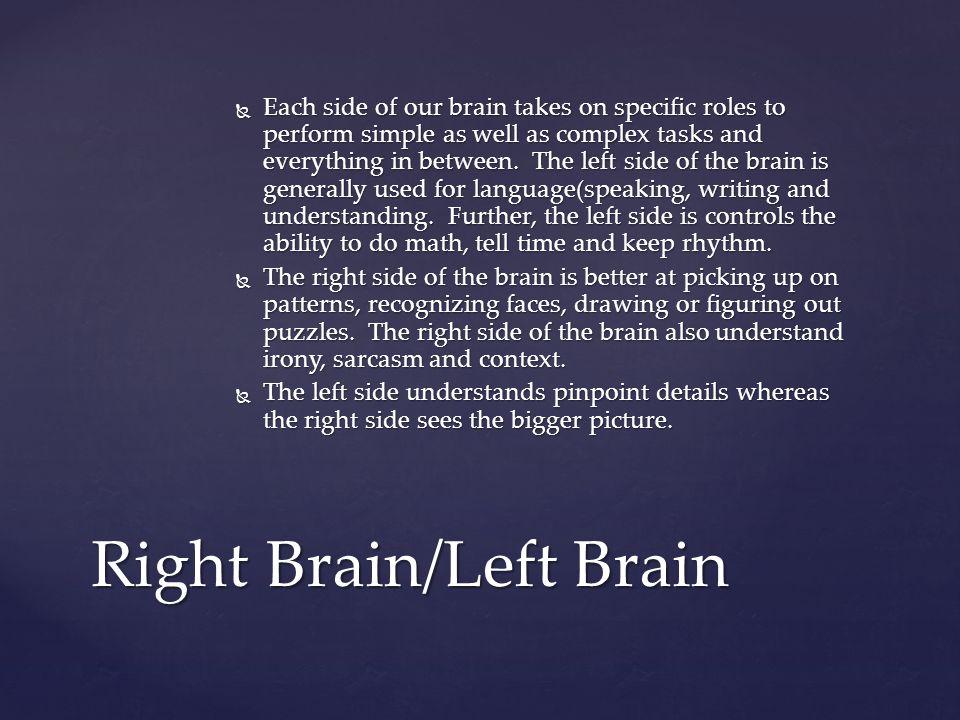 Right Brain/Left Brain