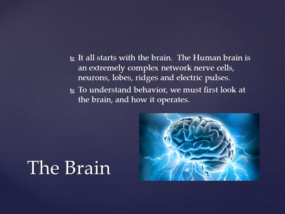 It all starts with the brain