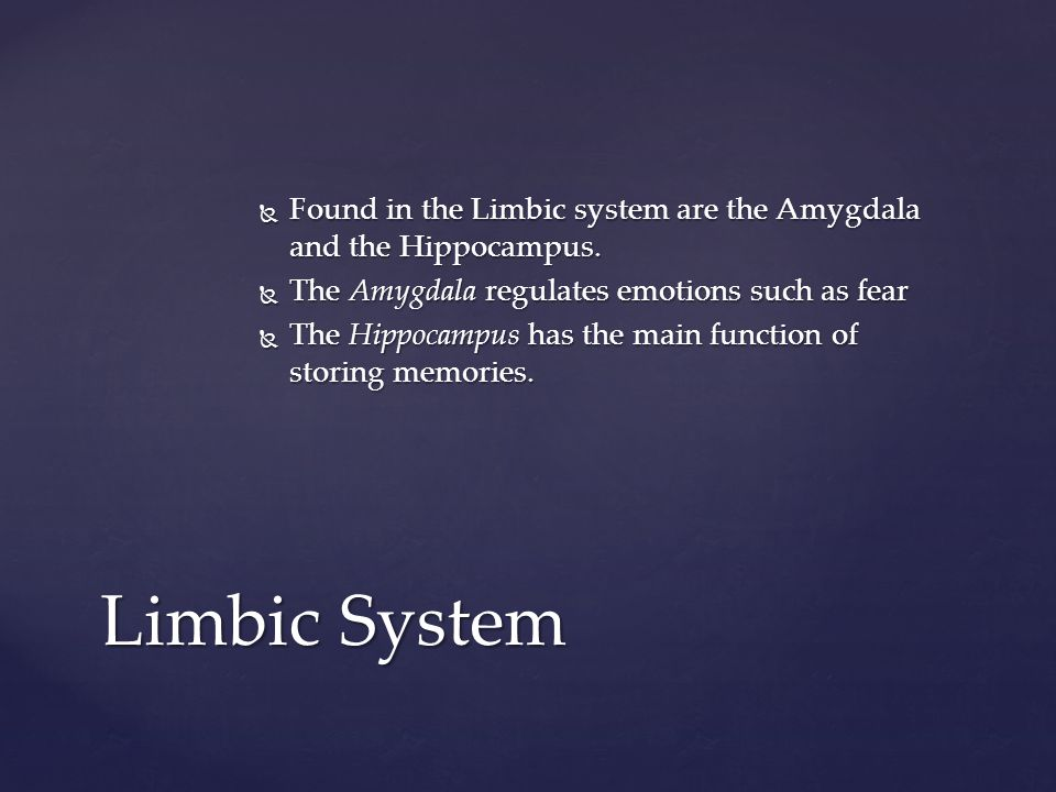 Found in the Limbic system are the Amygdala and the Hippocampus.
