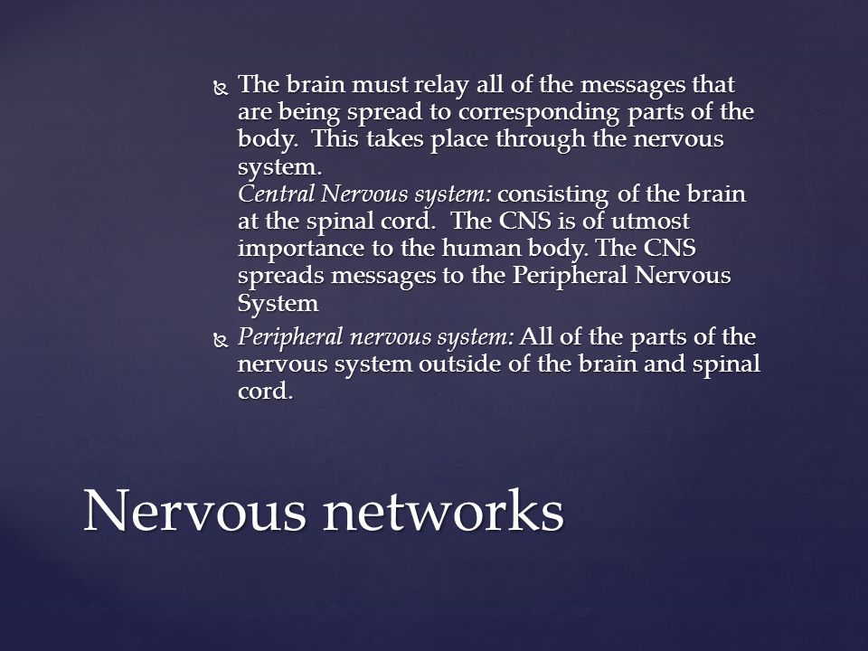 The brain must relay all of the messages that are being spread to corresponding parts of the body. This takes place through the nervous system. Central Nervous system: consisting of the brain at the spinal cord. The CNS is of utmost importance to the human body. The CNS spreads messages to the Peripheral Nervous System