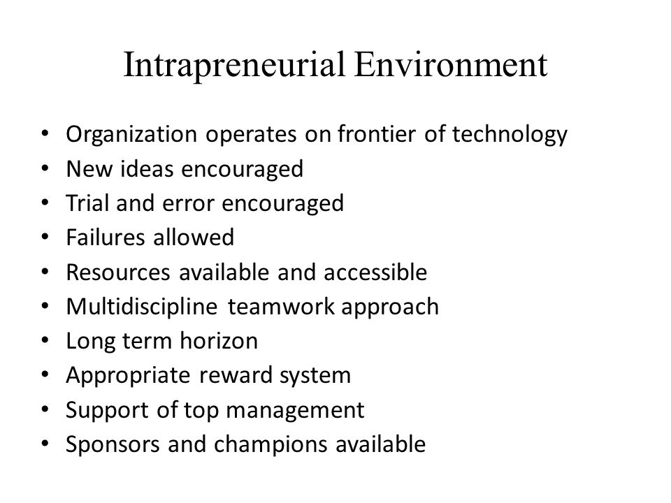Intrapreneurial Environment