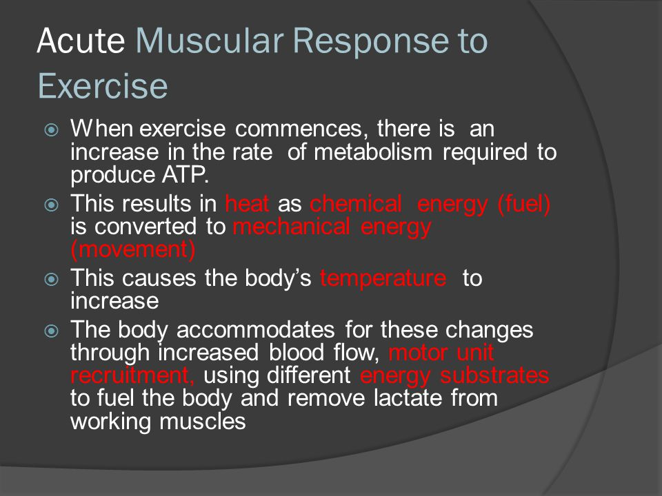 Acute Muscular Response to Exercise