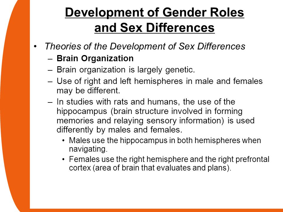 Development of Gender Roles and Sex Differences
