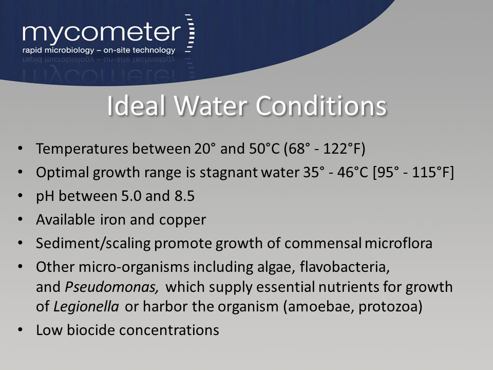 Ideal Water Conditions