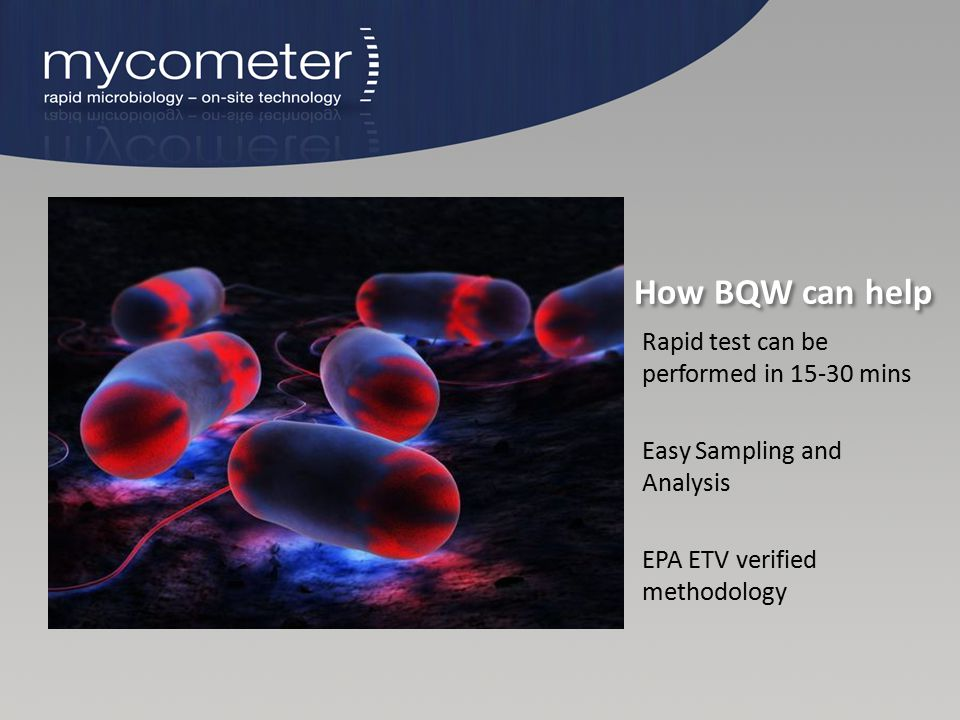 How BQW can help Rapid test can be performed in 15-30 mins