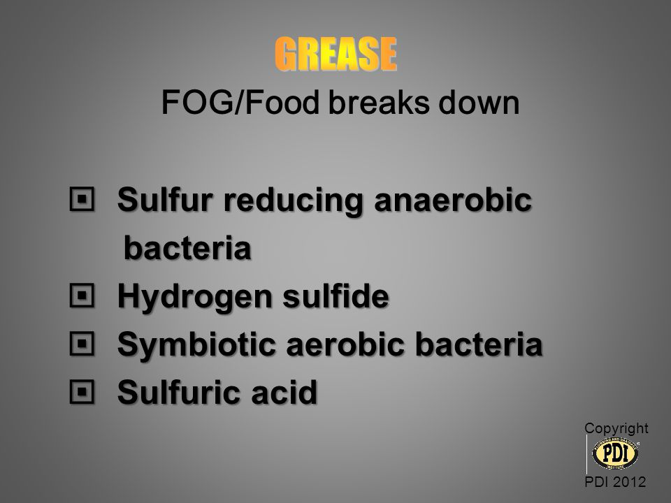GREASE FOG/Food breaks down Sulfur reducing anaerobic bacteria
