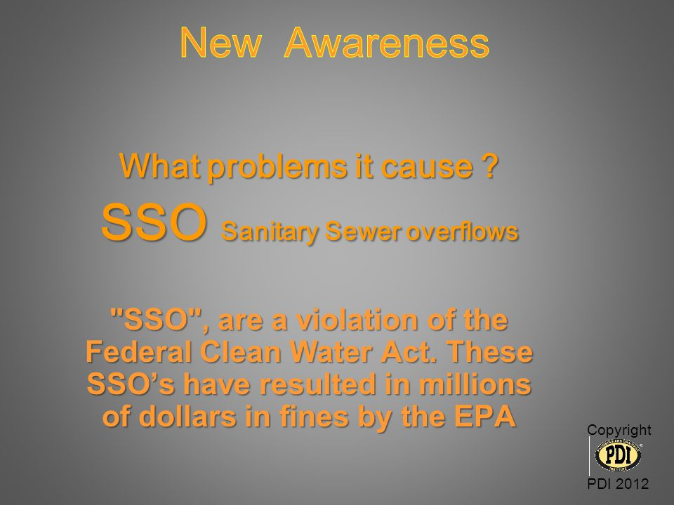 SSO Sanitary Sewer overflows