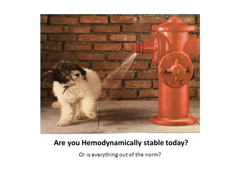 Are you Hemodynamically stable today