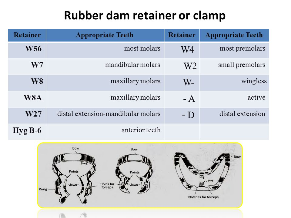 Rubber dam retainer or clamp