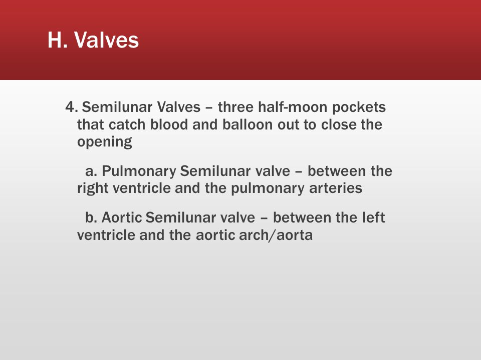 H. Valves