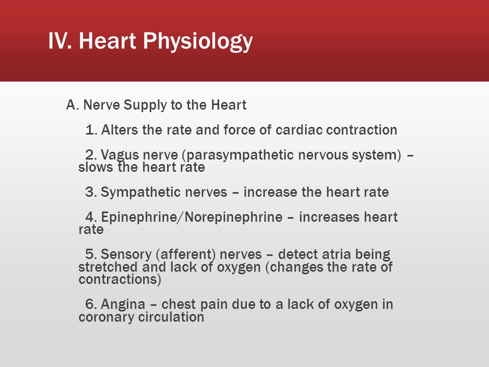 IV. Heart Physiology