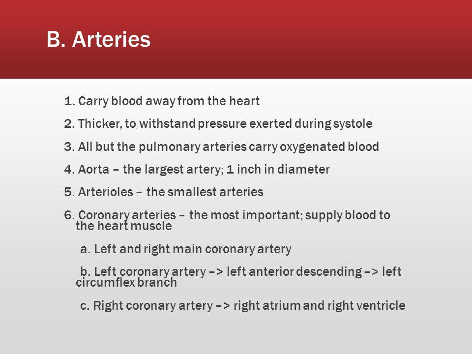 B. Arteries