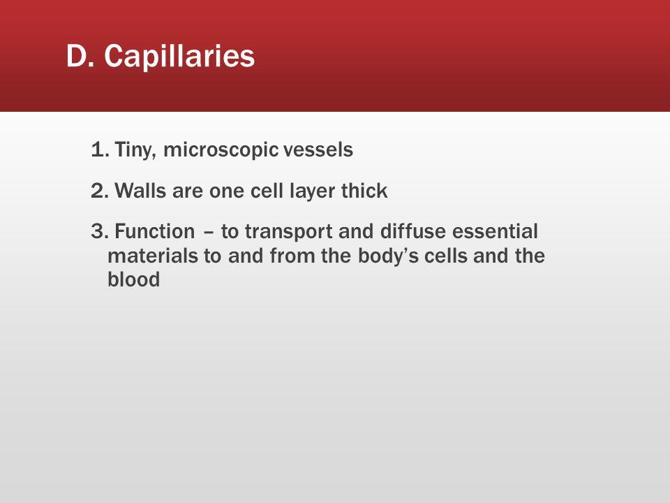 D. Capillaries