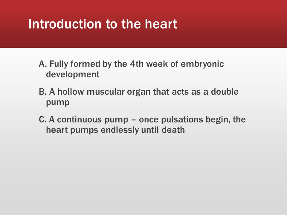 Introduction to the heart