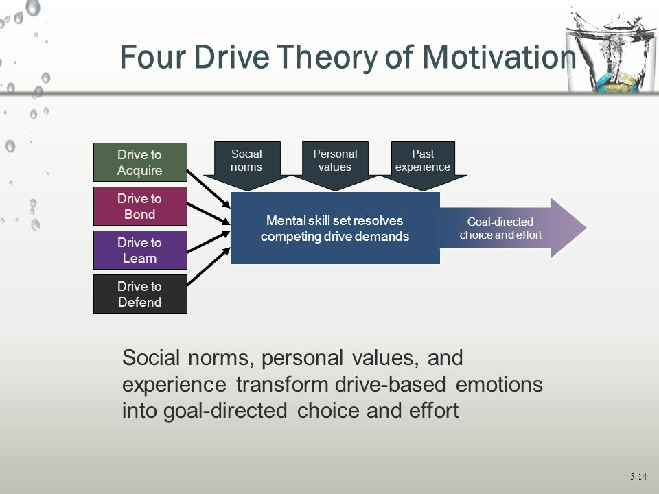 Four Drive Theory of Motivation