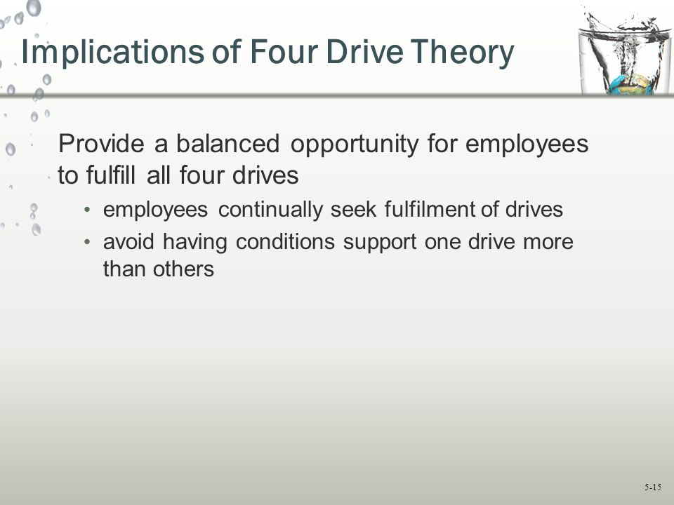 Implications of Four Drive Theory