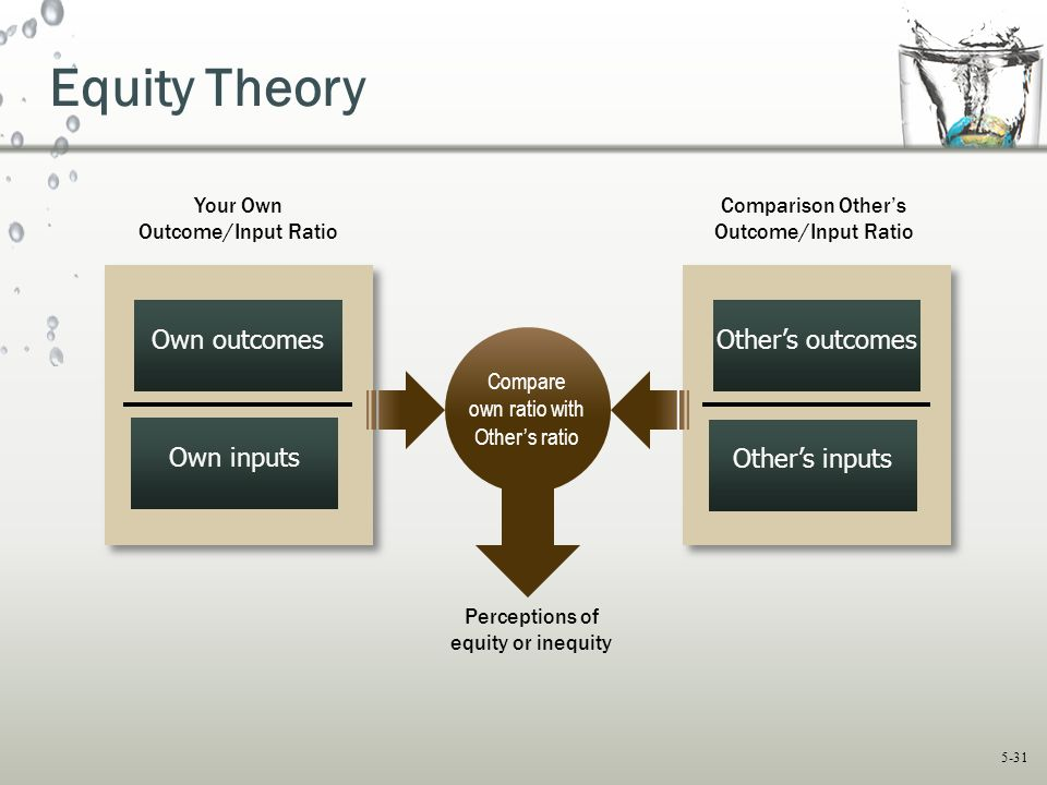 Equity Theory Own outcomes Other's outcomes Own inputs Other's inputs