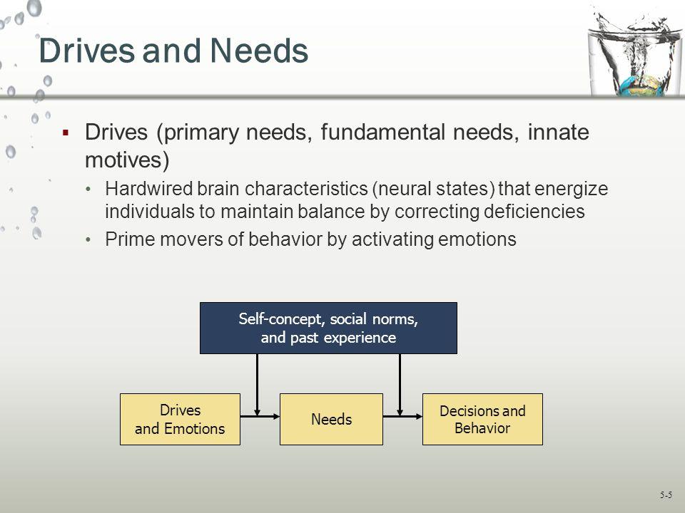 Drives and Needs Drives (primary needs, fundamental needs, innate motives)