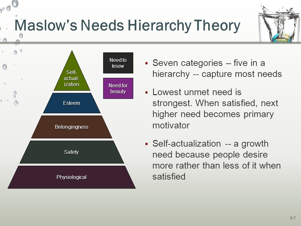 Maslow's Needs Hierarchy Theory