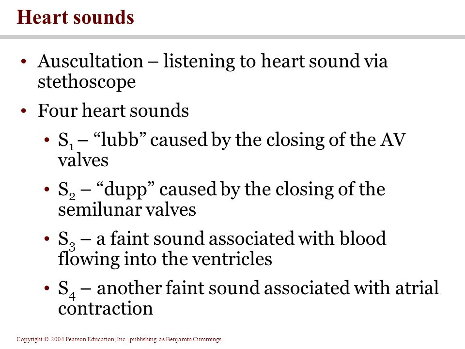 Heart sounds Auscultation – listening to heart sound via stethoscope