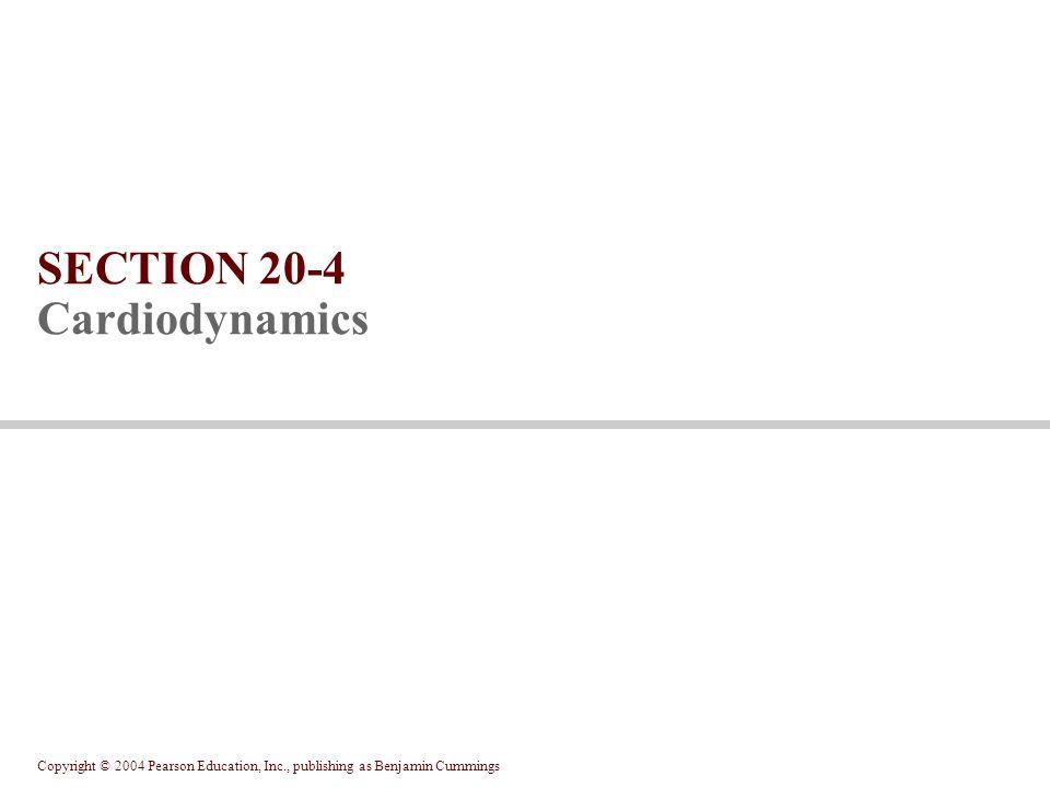 SECTION 20-4 Cardiodynamics