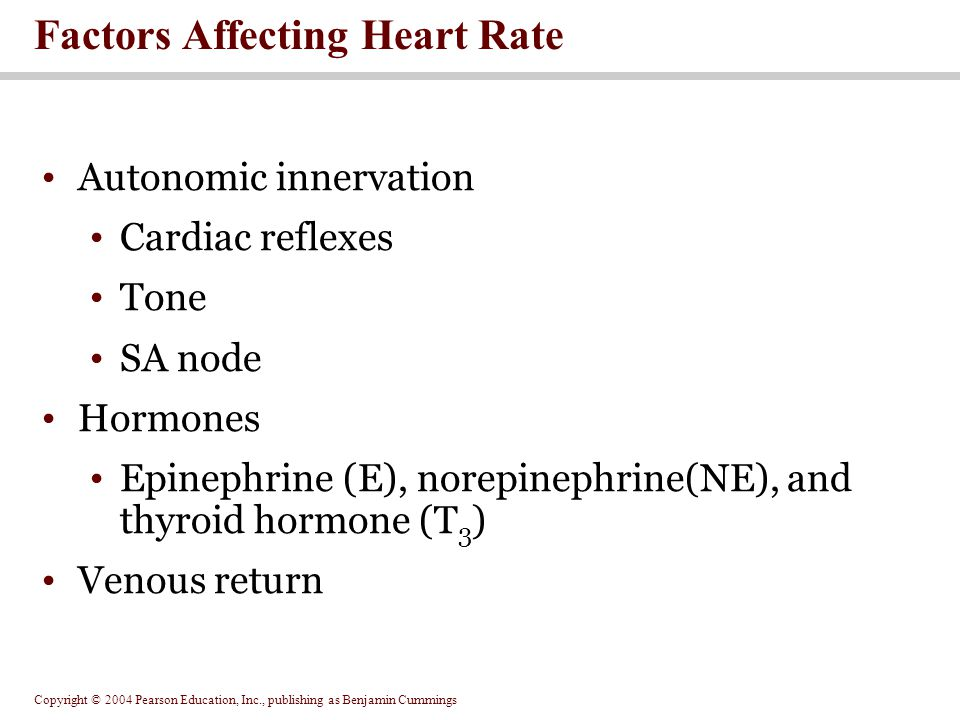 Factors Affecting Heart Rate