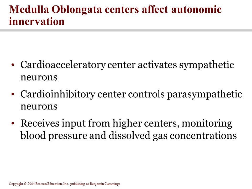Medulla Oblongata centers affect autonomic innervation
