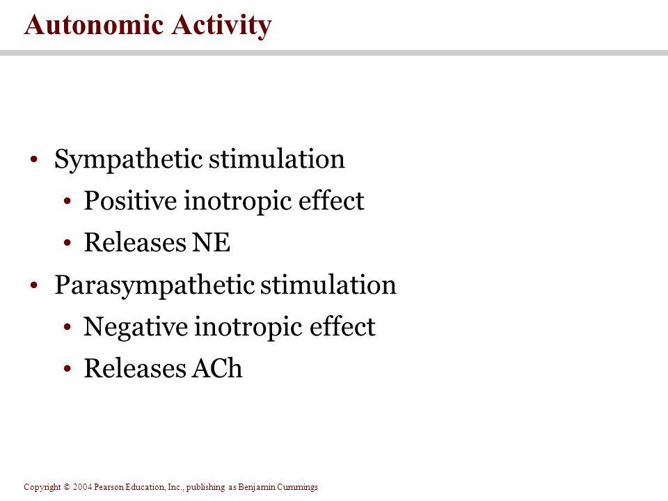 Autonomic Activity Sympathetic stimulation Positive inotropic effect