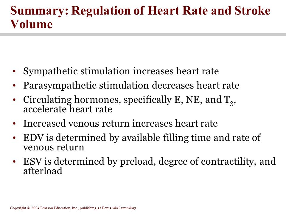 Summary: Regulation of Heart Rate and Stroke Volume
