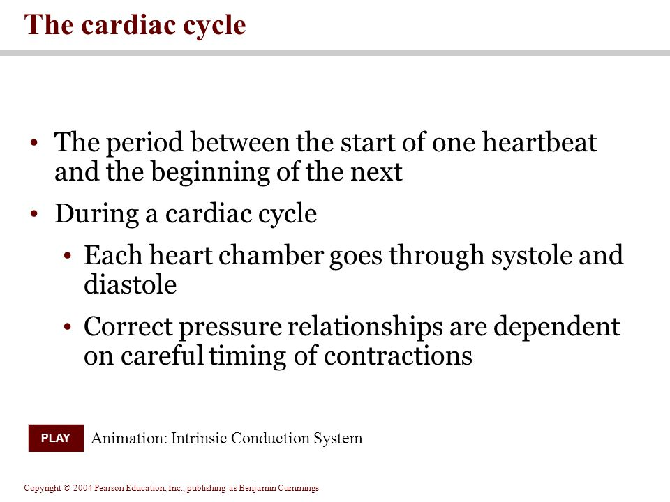 The cardiac cycle The period between the start of one heartbeat and the beginning of the next. During a cardiac cycle.