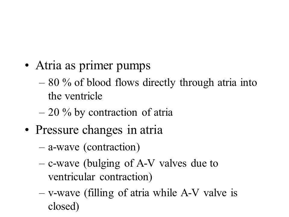 Pressure changes in atria