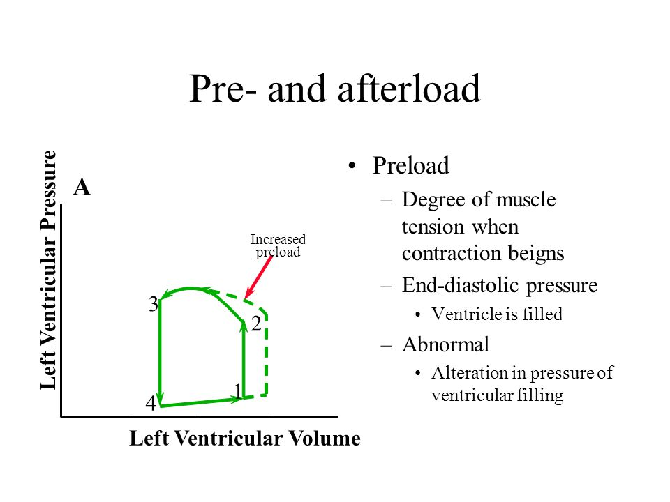 Pre- and afterload Preload A