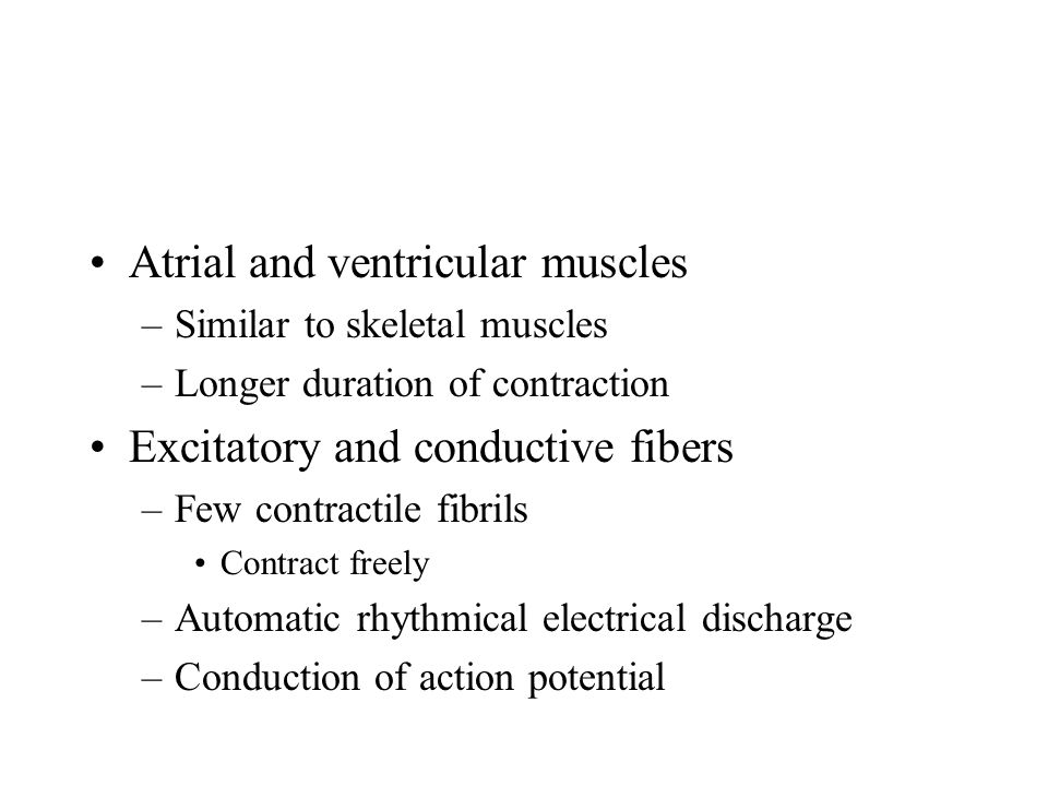 Atrial and ventricular muscles