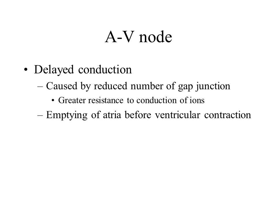 A-V node Delayed conduction Caused by reduced number of gap junction