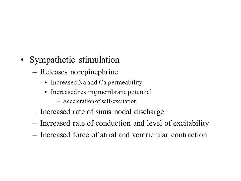 Sympathetic stimulation