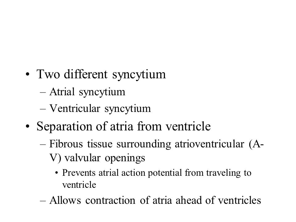 Two different syncytium