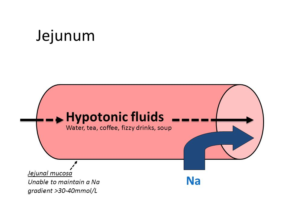 Jejunum Hypotonic fluids Na Water, tea, coffee, fizzy drinks, soup