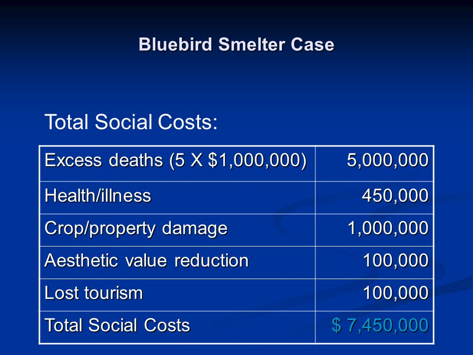 Total Social Costs: Bluebird Smelter Case